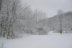 snow-Mar_1-scaled