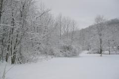 snow-Mar_3-scaled