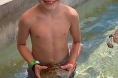 Jacks-turtle