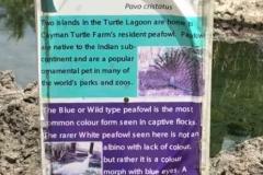 Park-Info
