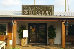 Magnolia_Seed_Supply1