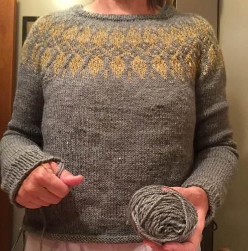 Robin_sweater1