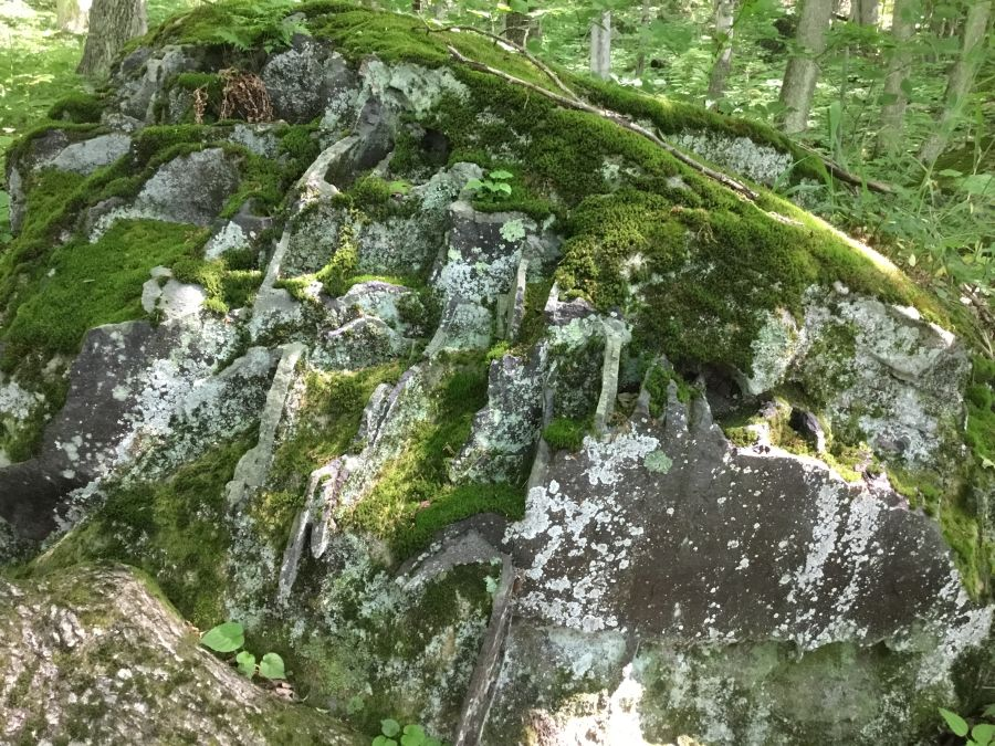 H_C_Rock_Trail_h